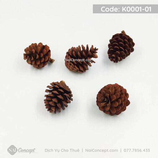 K0001-01 (3)